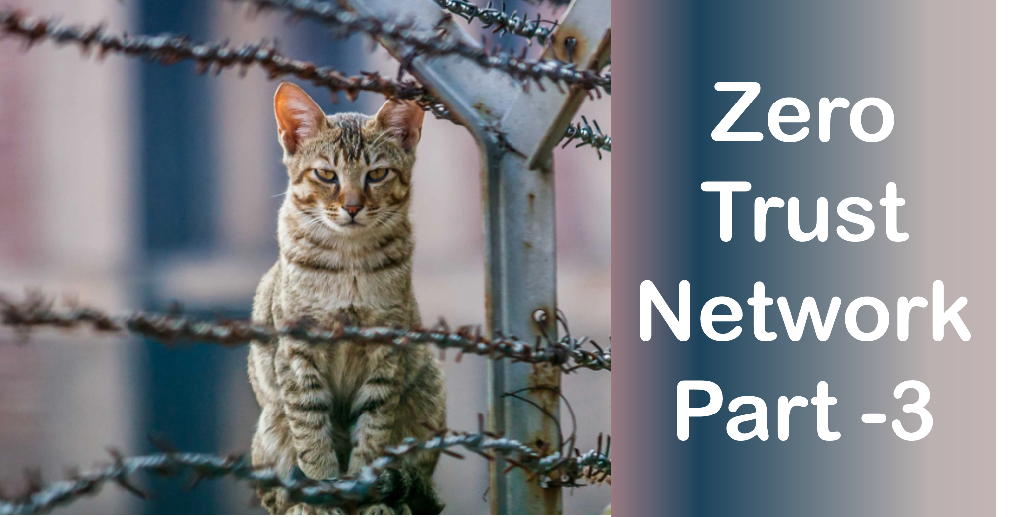 Part 3 : Zero Trust Network Access (ZTNA)