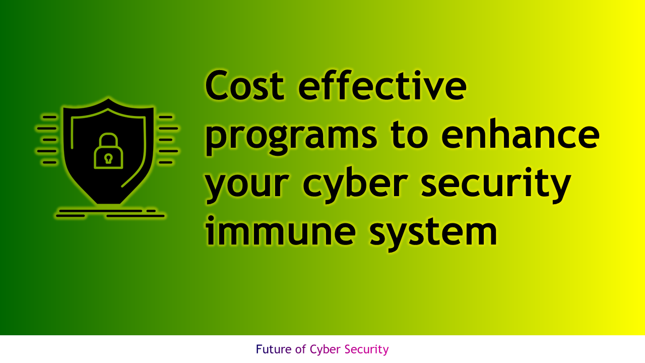 Cost effective programs to enhance cyber security immune system